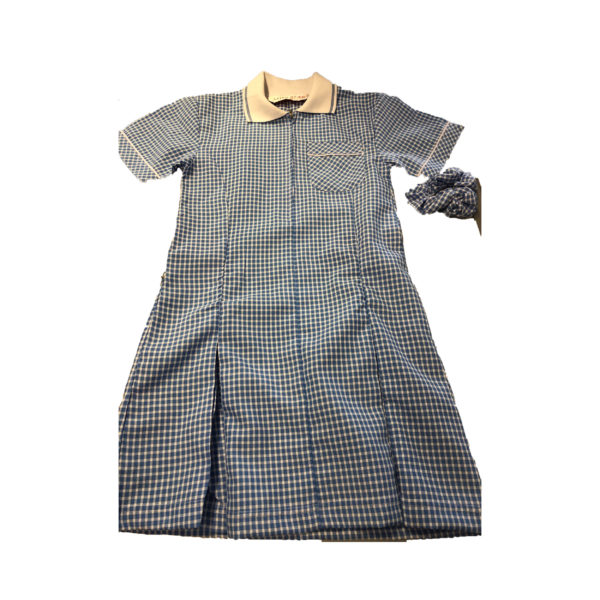 Checked Summer Dress - Navy Shop