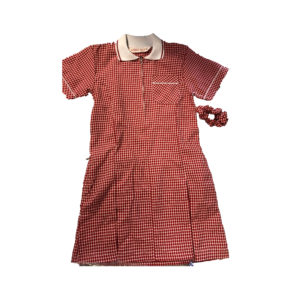 Checked Summer Dress - Red Shop