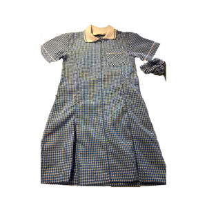 Checked Summer Dress - Sky Blue Shop