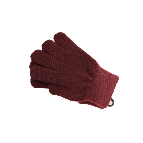 Gloves - Maroon Shop