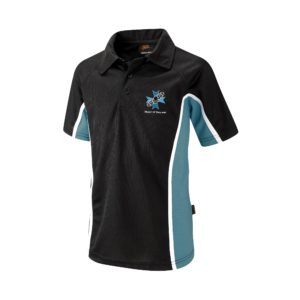 Heart of England Sport's Loose Fitted Polo Shirt (Falcon) - Black / Teal Shop